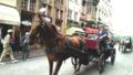 ヨーロッパは馬好きの天国!そのワケとは?2分で読める★写真付き★